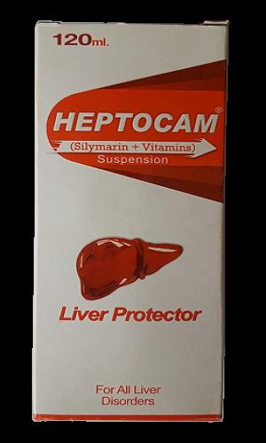 Heptocam