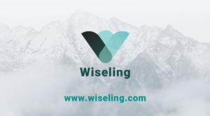 wiseling card